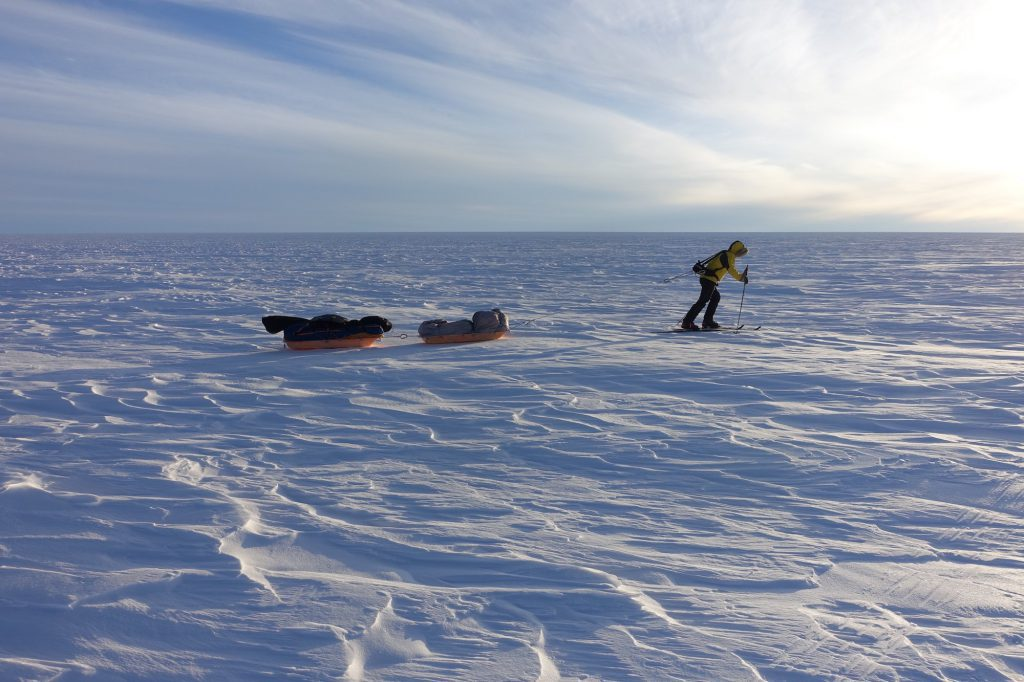 hauling sleds in greenland